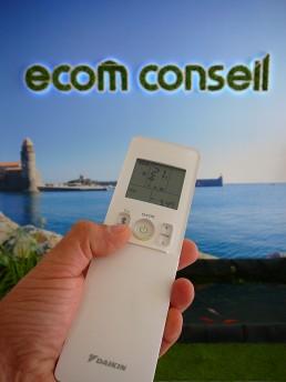 hall ecom